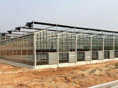 日光温室工程案例