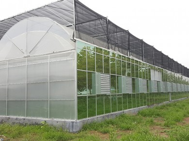 阳光板智能温室