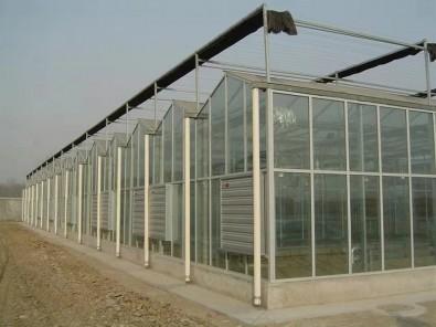 智能玻璃温室案例