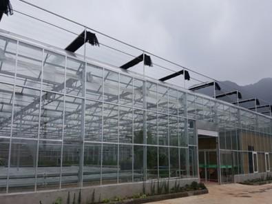 纹洛玻璃温室