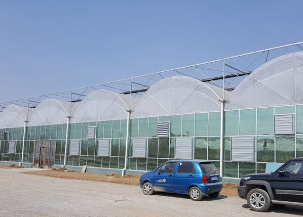 双拱双膜连栋温室